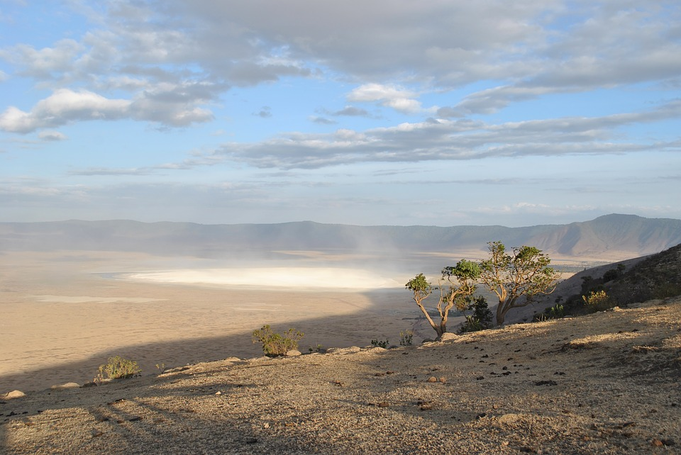 Ngorongoro-National-Park-Tanzania-Tour-Safari (7)